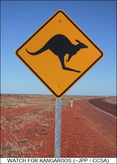 Australian Outback warning sign
