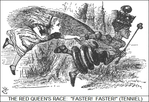 The Red Queen's Race