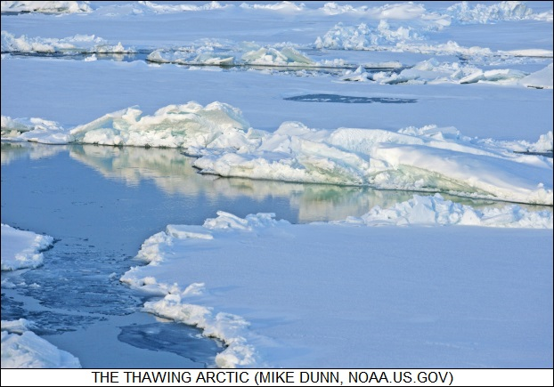 the thawing Arctic